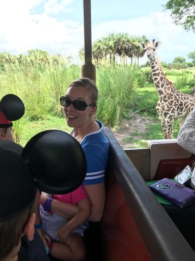 Giraffe Standoff