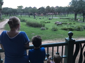 View from our balcony overlooking the safari.